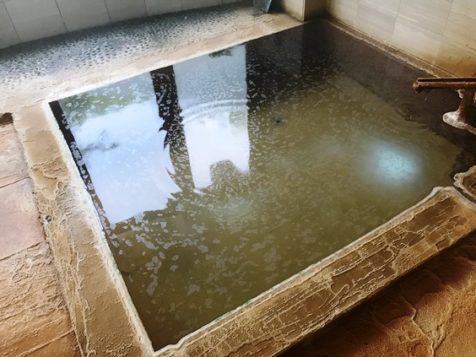 【群馬】八塩温泉 神水館