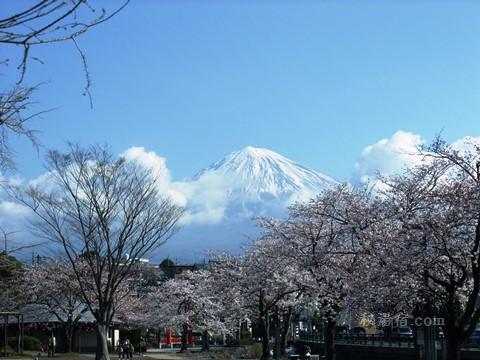 静岡県の「日本秘湯を守る会」の会員宿