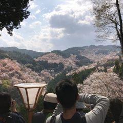 奈良県の「日本秘湯を守る会」の会員宿