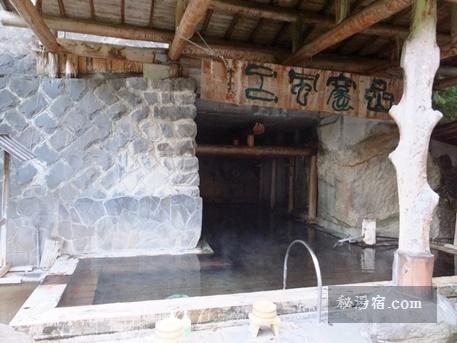 奥つちゆ 川上温泉 予約ページ
